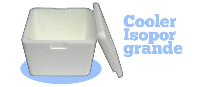 Cooler-Isopor-Controle-Temperatura