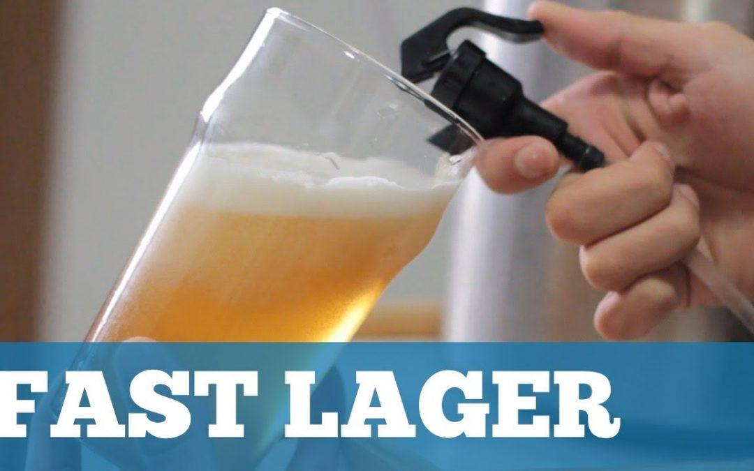 Como Fazer uma Cerveja Lager em 2 Semanas