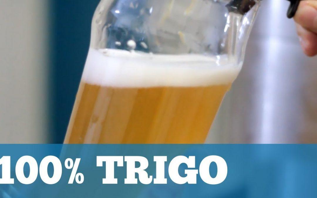 Será que dá? Receita de Cerveja 100% TRIGO!